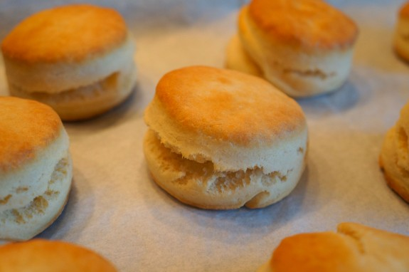 Super Simple Cream Biscuits - LindySez Recipe