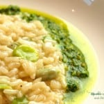 Risotto with Fava Beans and Fava Leaf Pesto