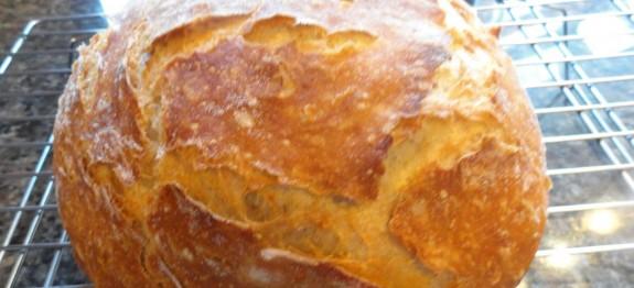 quick no knead crusty rye bread