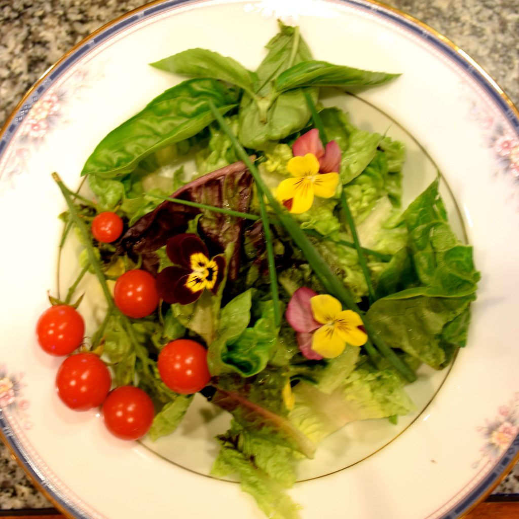 baby greens with balsamic vinagrette