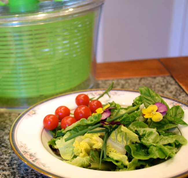 baby greens with a light balsamic vinaigrette