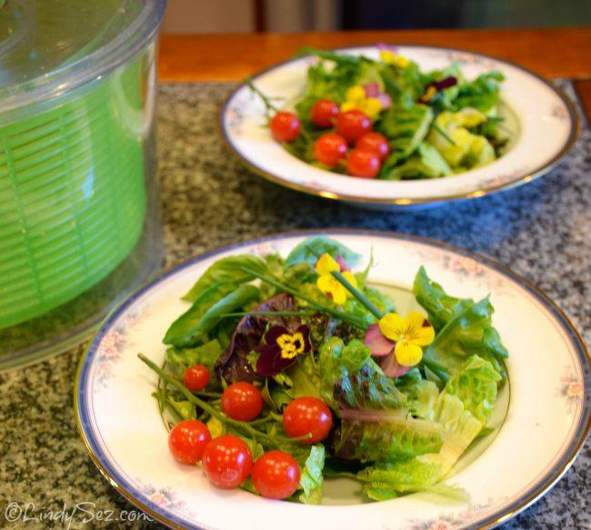 baby greens salad with light balsamic vinaigrette